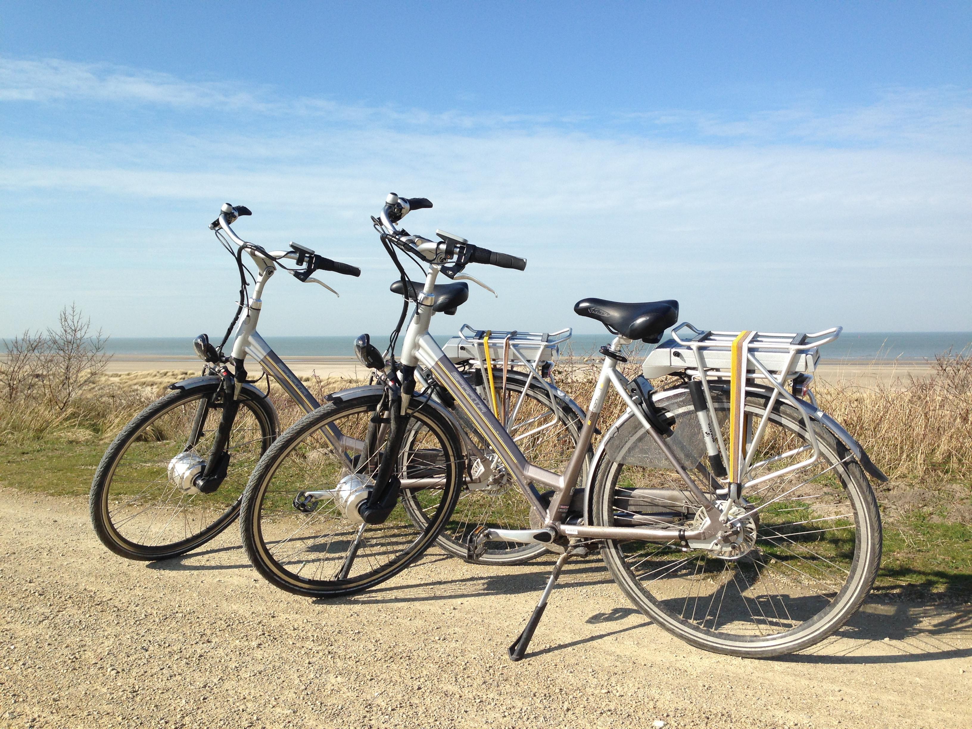 Elektrische fiets voor volwassenen