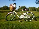 Vrolijke fietsen
